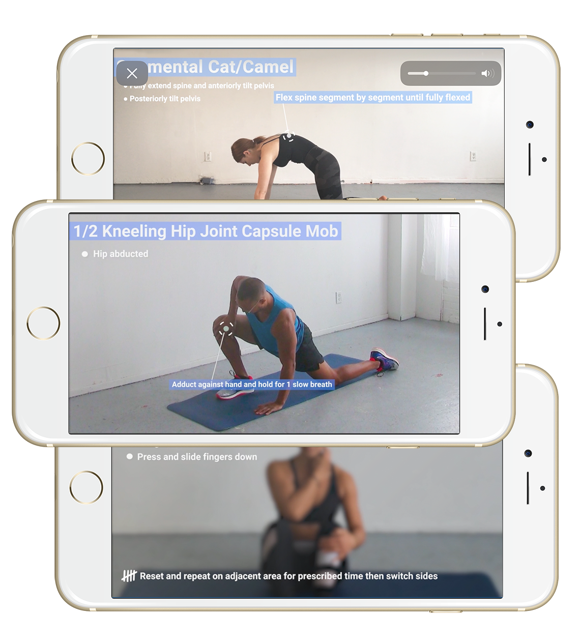 Whether you're at home, traveling or at the gym, just fire up the app and go knowing no special equipment is necessary
